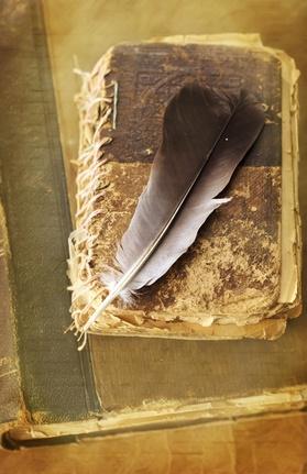Ptasie pióro na starej księdze