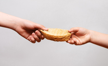 Kromka chleba w dłoni dziecka